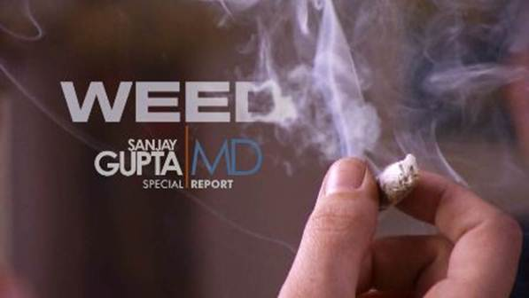 CNN International: Weed:  Sanjay Gupta Reports