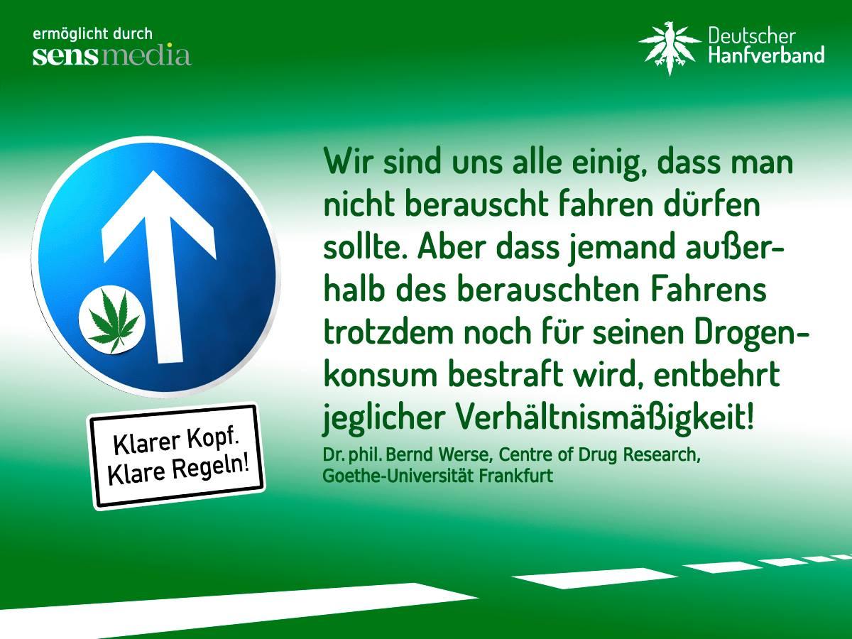 Zitat von Bernd Werse zur Führerscheinkampagne des Deutschen Hanfverbandes. Bild: Deutscher Hanfverband.