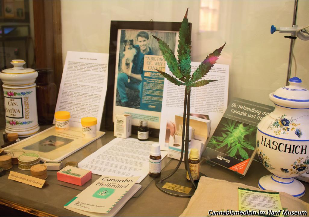 """Cannabis als Medizin, Foto aus der Chronik """"25 Jahre Hanf Museum"""""""