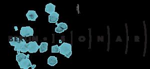 Logo Sonar Berlin