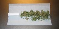 Noch nicht gerollter Joint (Bild ist gemeinfrei)