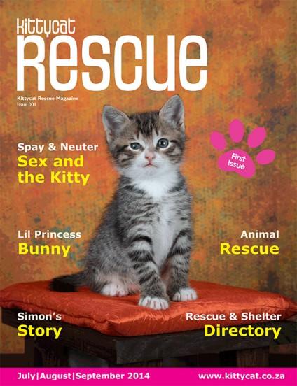 Kittycat-Rescue