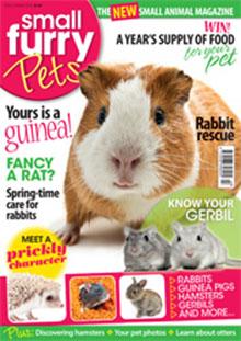 Pets_Magazine