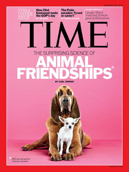 animal-friendship