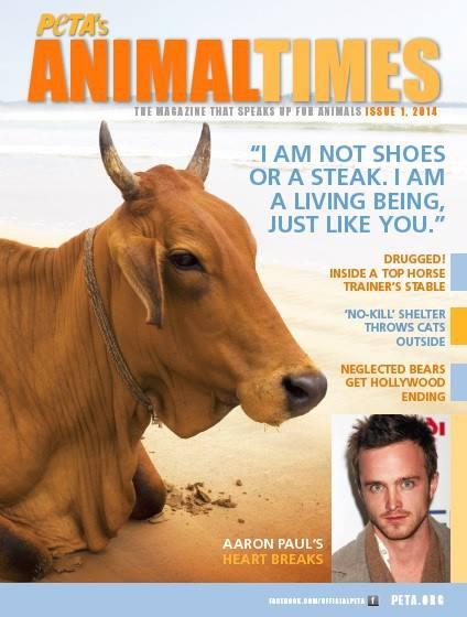 animal-times