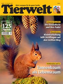 tierwelt-ch