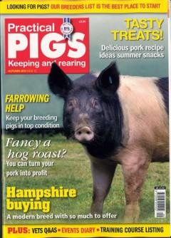 practical-pigs