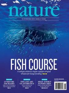 Nature-fish