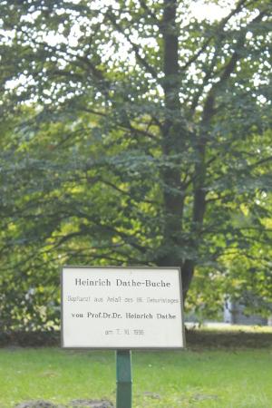 dathe-bucheb