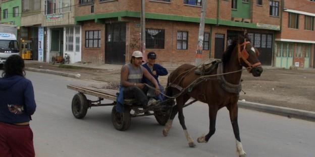 Mit Kutschen oder zu Fuss sind die Recicladores in Bogotá unterwegs.....