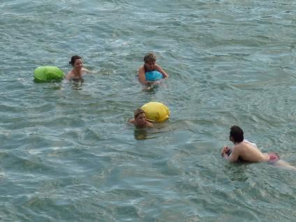 RheinschwimmerInnen