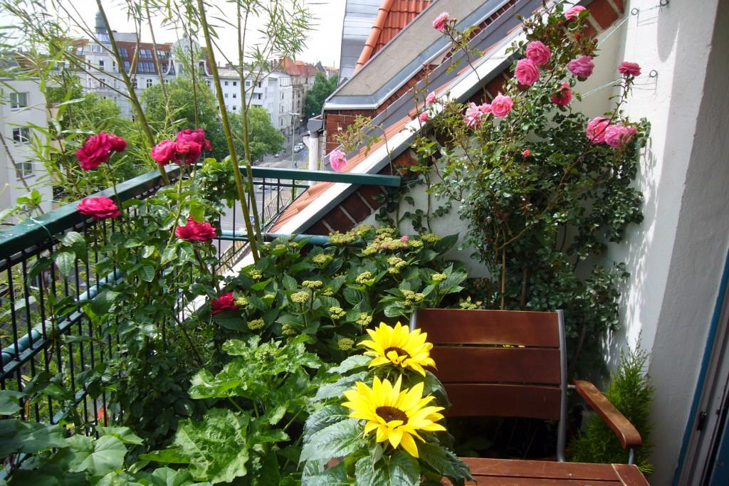 Balkon-Juni-2015, Bundesplatz, tazblog Schröder & Kalender