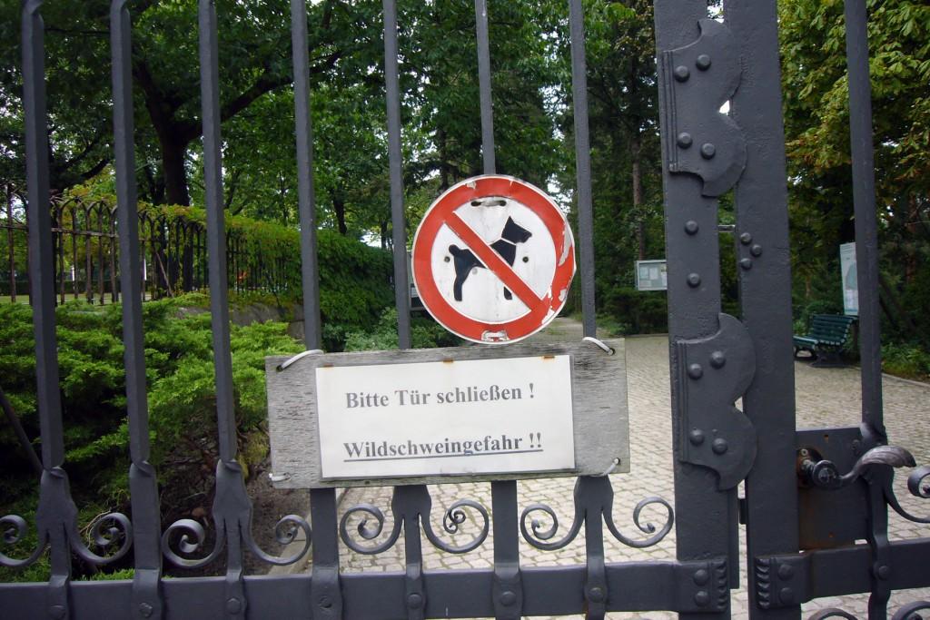 1-Wildschweingefahr, Prominentenfriedhof Heerstraße, tazblog Schröder & Kalender, Foto: Barbara Kalender
