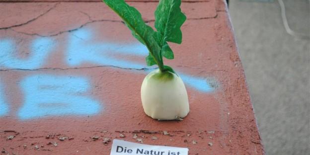 """""""Die Natur ist in der Stadt"""" - nah. Fuldastraße. Berlin-Neukoelln."""